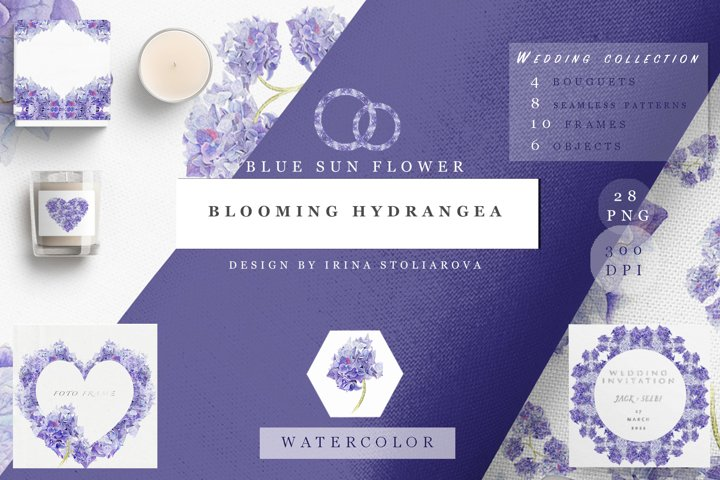 Blooming hydrangea. Collection of cliparts and paterns