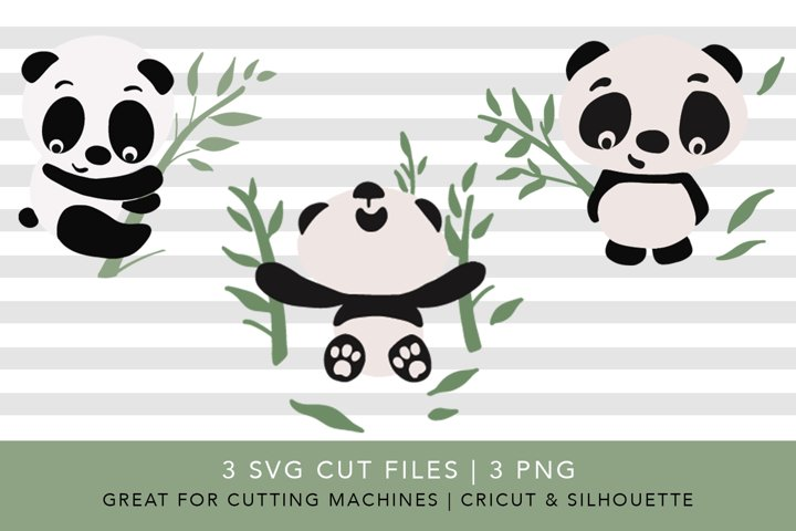 Panda and Bamboo | SVG PNG