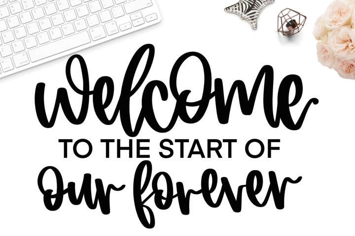 Welcome to the start of our forever svg, wedding sign svg