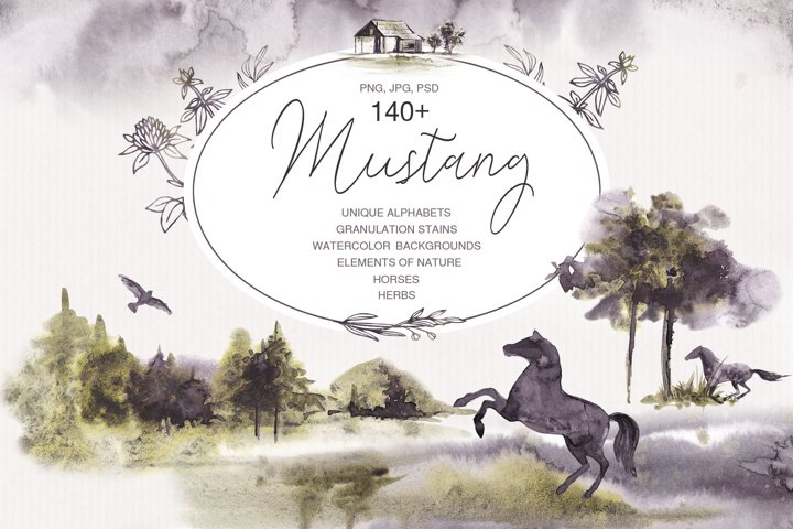 MUSTANG. Nature, herbs and horses.