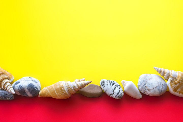 Sea shells and stones for advertising summer holidays