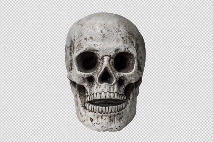 Halloween decoration skull PNG