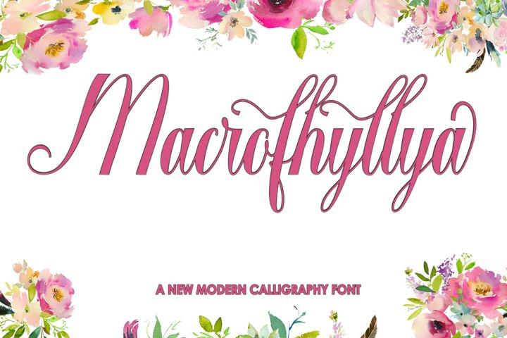 Macrofhyllya