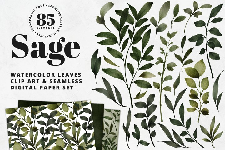 Sage Leaves Watercolor Clip Art & Digital Paper Set