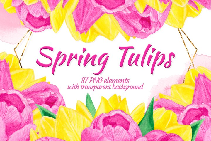 Pink yellow floral clipart Watercolor tulip constructor