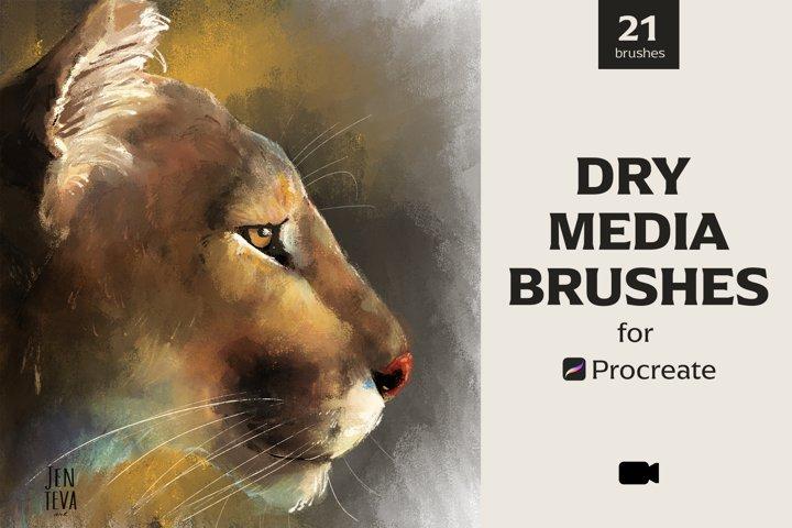 Dry Media Brushes - Procreate