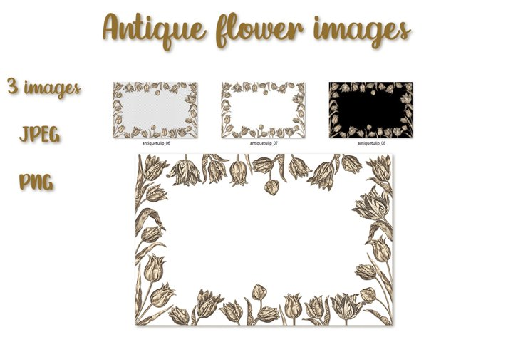 Floral frame from tulips in antique style