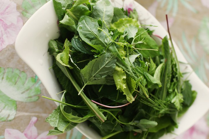 Wild Greens in Salad