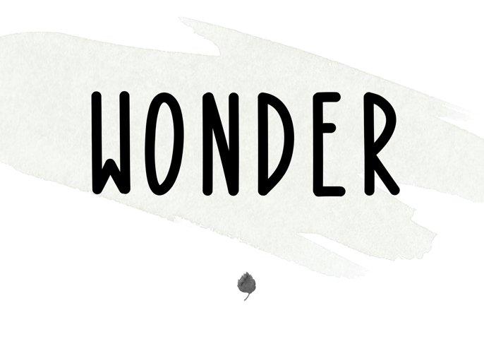 Bonfire - A Bold Handwritten Font - Free Font of The Week Design1