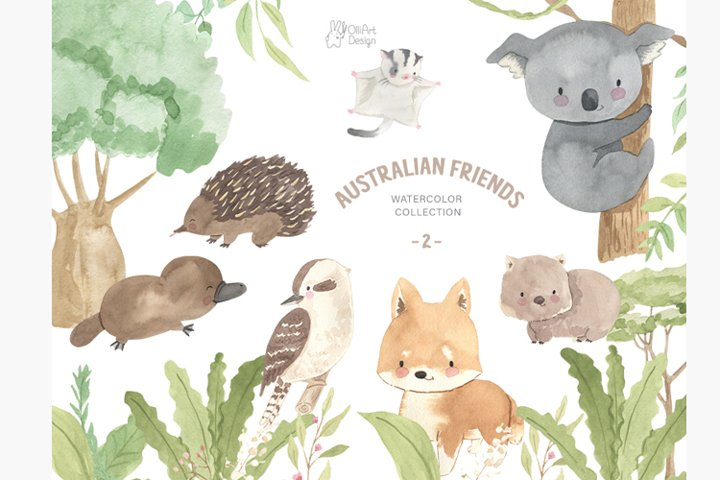 Australian animals clipart, part 2. Watercolor collections