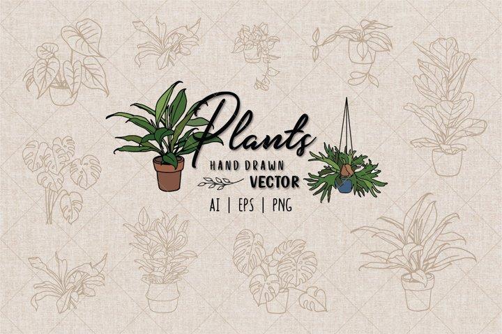 Plants Hand drawn vector