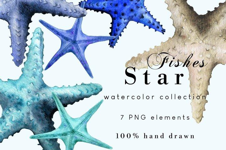 Nautical Clipart | Watercolor Starfish Set