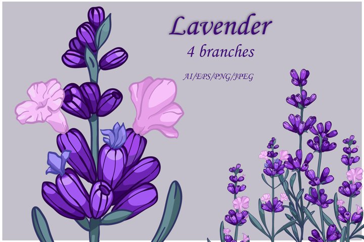 vector hand painted Lavender Clipart