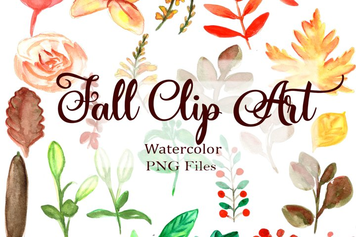 Autumn Watercolor Clipart. Fall Leaves and Flowers PNG.