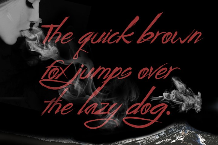 Wild Zova Family - Free Font of The Week Design0