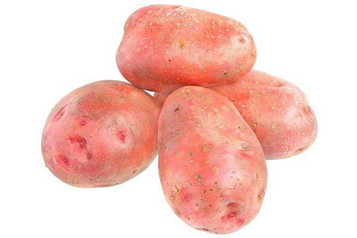Stock Photo - Potato on a white background.