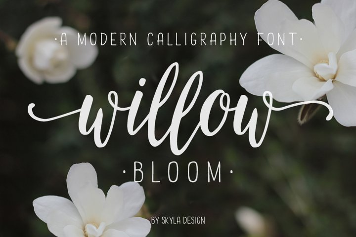 Modern calligraphy font Willow Bloom