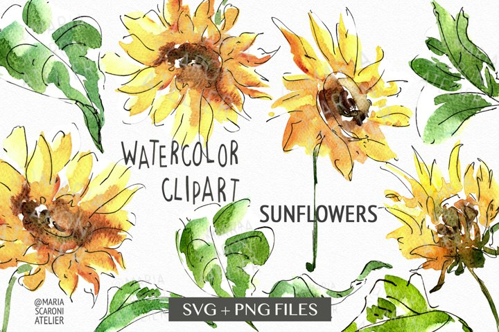 Sunflower SVG, Sunflower PNG Bundle Instant Download