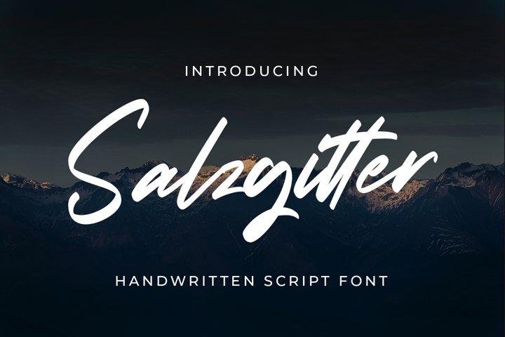 Salzgitter - Script Fonts