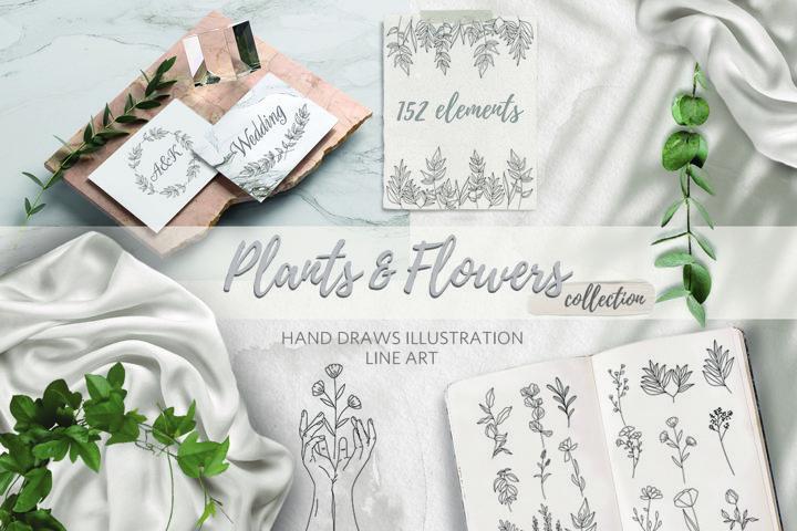 Bundle Plants&Flowers collection