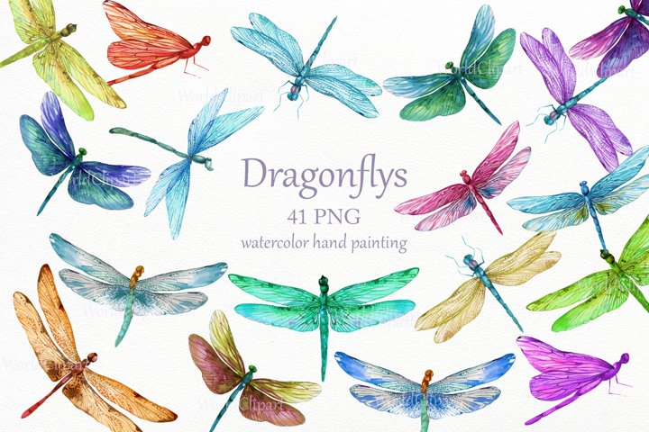 Dragonflys Png, Dragonfly Watercolor, Digital Dragonflys