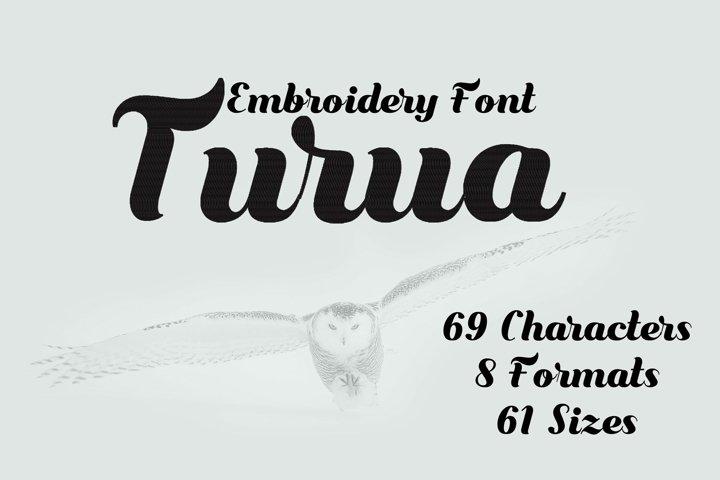 Beautiful Script Embroidery Font, Fancy Brush Font