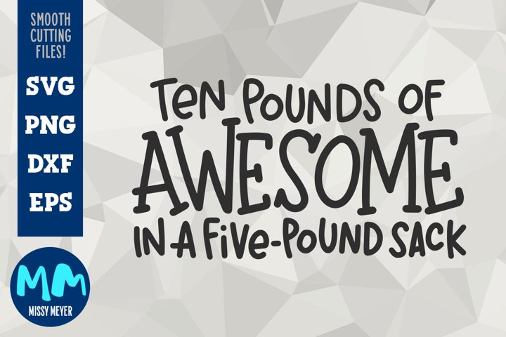 Ten Pounds of Awesome in a Five-Pound Sack - Hand-lettered