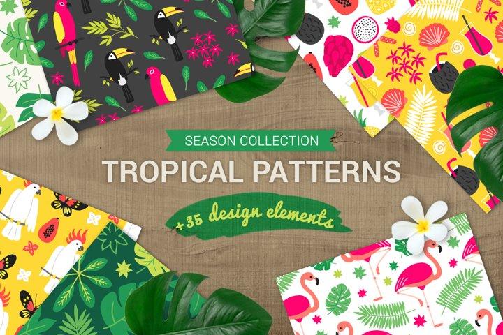Tropical Patterns & Design Elements