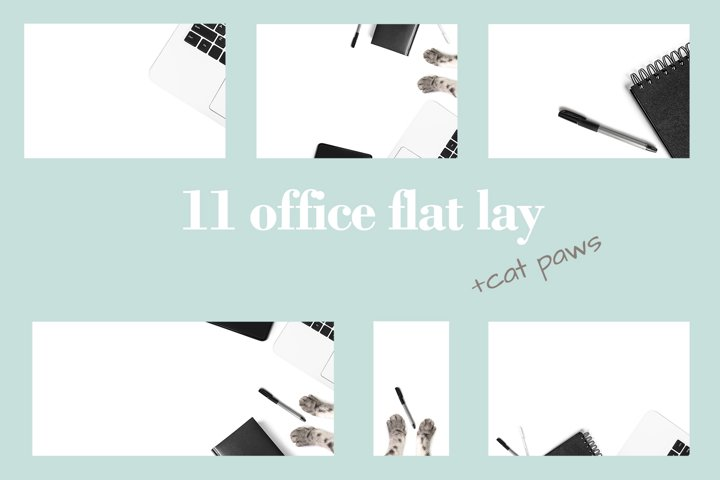 11 creative office flat lay with cat paws!
