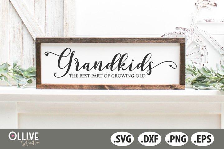 Grandkids The Best Part Of Growing Old SVG | Grandkids SVG