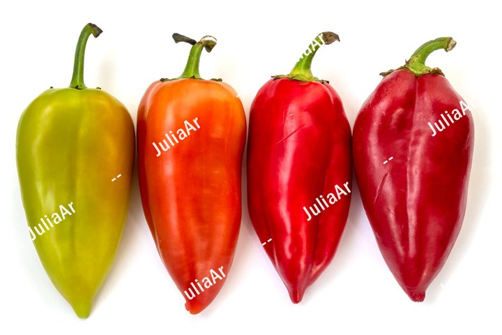4 sweet peppers on white background