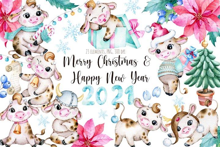 Watercolor New Year Cute Bulls clipart,Symbol of a year 2021