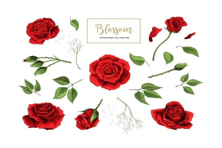 Vector red rose flower design elements set for Valentines