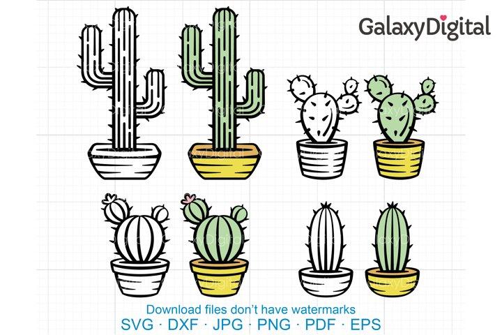 Cactus SVG, Succulent Plants SVG