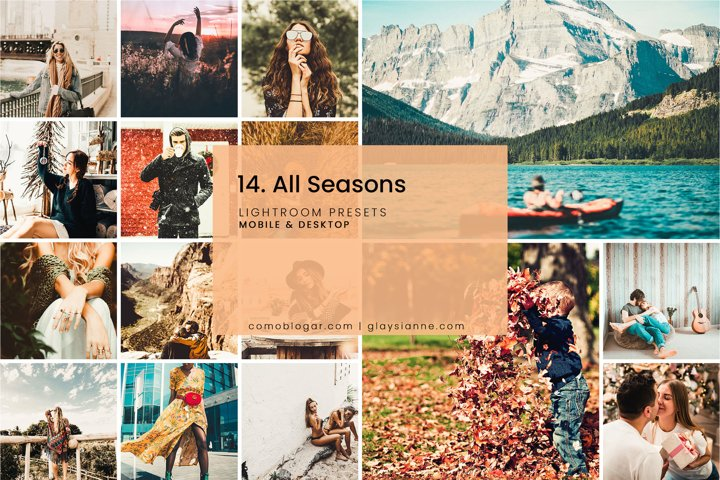 14. All Seasons - Lightroom Presets