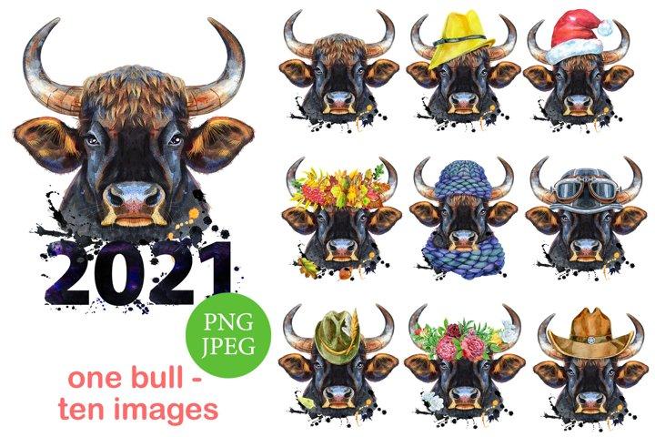 Cute watercolor powerful bull