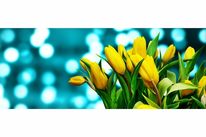 Bouquet of yellow tulips on blue defocused bokeh background