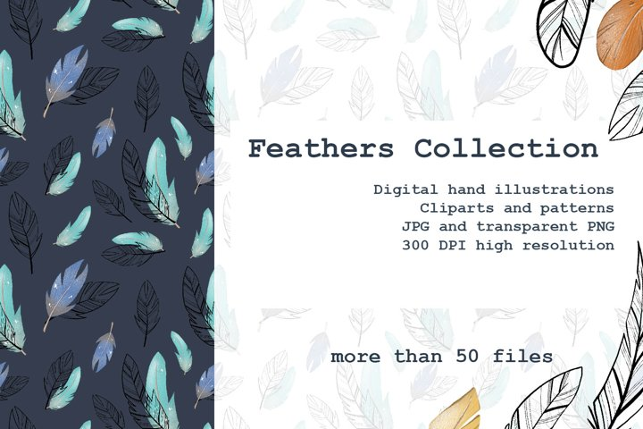 Digital colored and contour feathers clipart for design