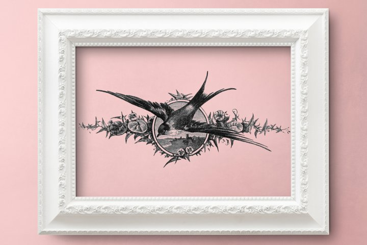 Vintage Swallow, Bird Illustration, Black and White Swallow