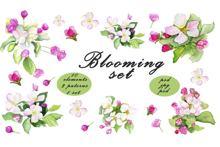 Watercolor apple blooming collection. 10 elements, 2 pattern