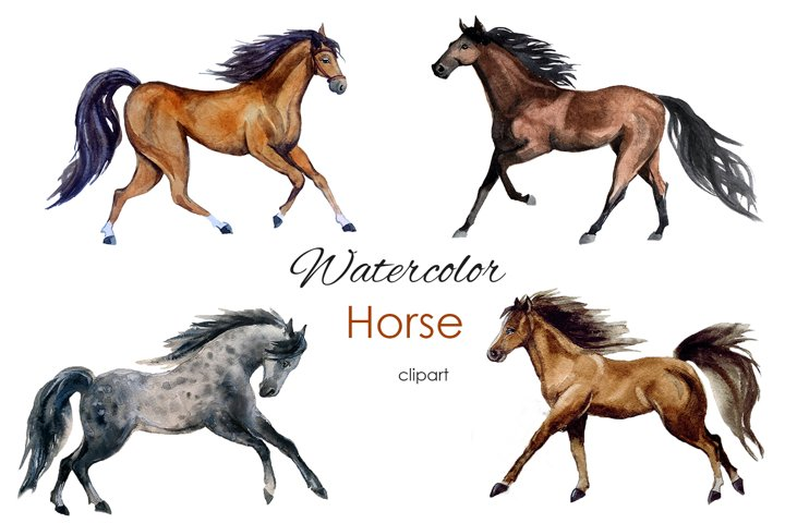 Watercolor Clipart. Digital horse clipart. Realistic animal