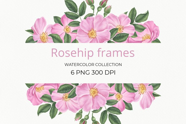 Rosehip frames