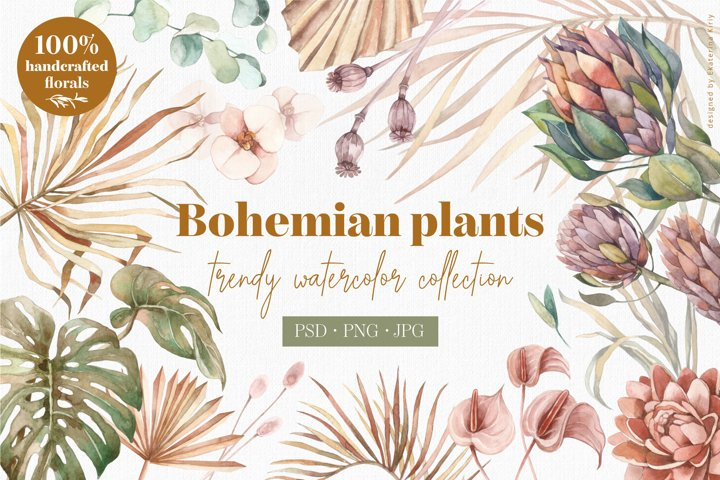 Bohemian plants - trendy watercolors