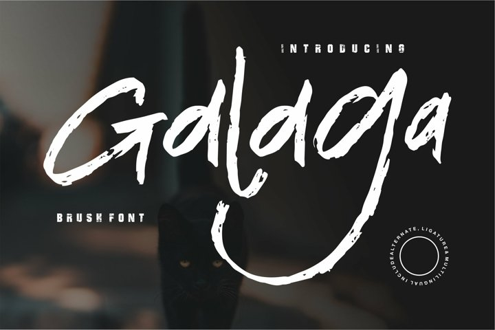 Web Font Galaga - Brush Font