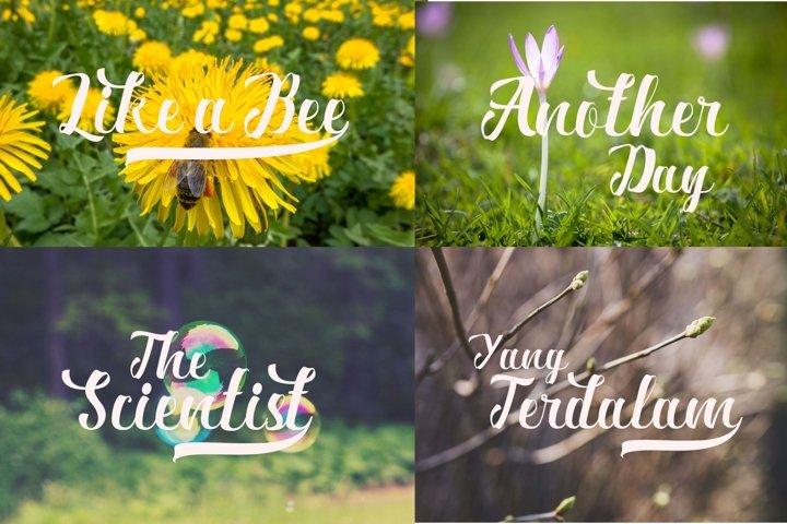 Ardina Script - Free Font of The Week Design1