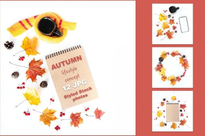 Autumn bundle lifestyle