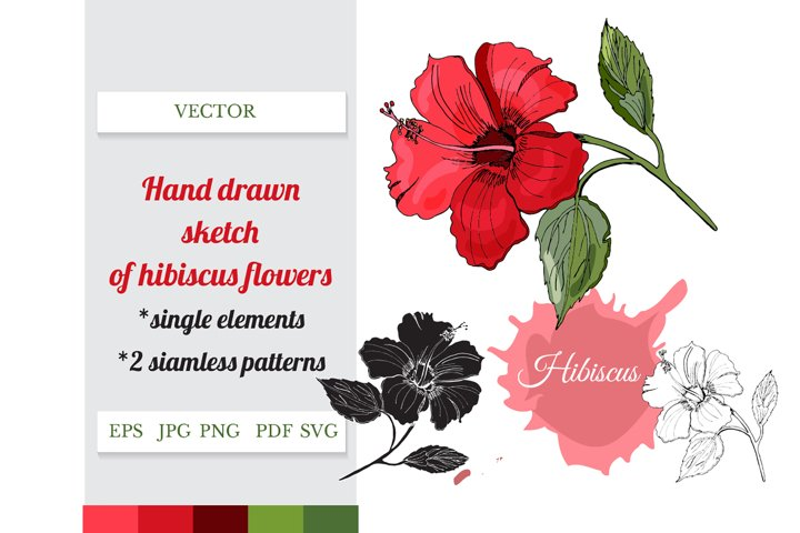 Hand drawn sketch of hibiscus plant. Seamless patterns