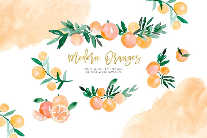 Orange Citrus Watercolor Clipart, Bitter Orange Wall Art