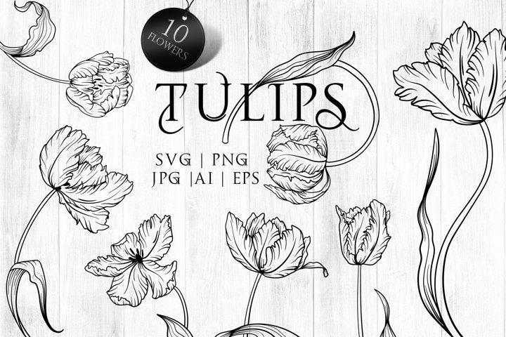 Tulips line art SVG, PNG. Hand drawn doodle flowers