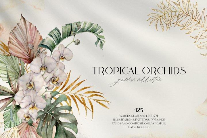 Tropical orchids. Watercolor bundle